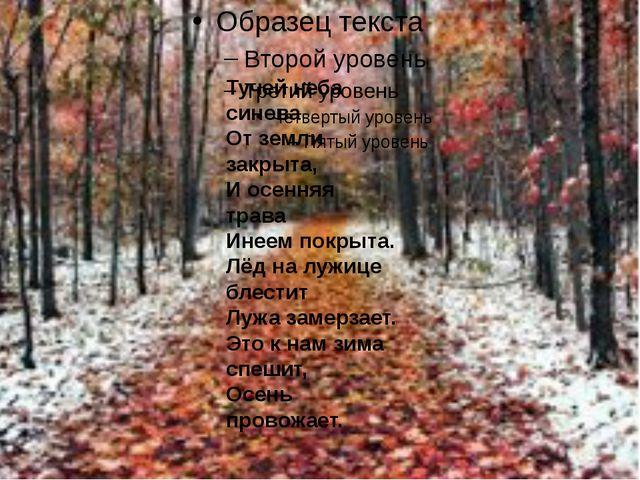 Тучей неба синева От земли закрыта, И осенняя трава Инеем покрыта. Лёд на лу...