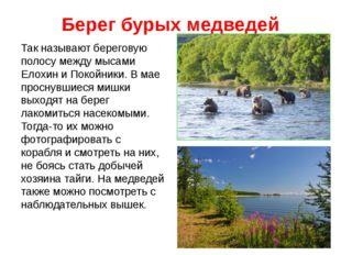 Берег бурых медведей Так называют береговую полосу между мысами Елохин и Поко