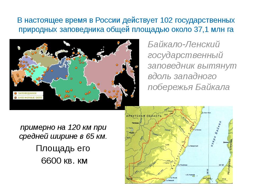 В настоящее время в России действует 102 государственных природных заповедник...