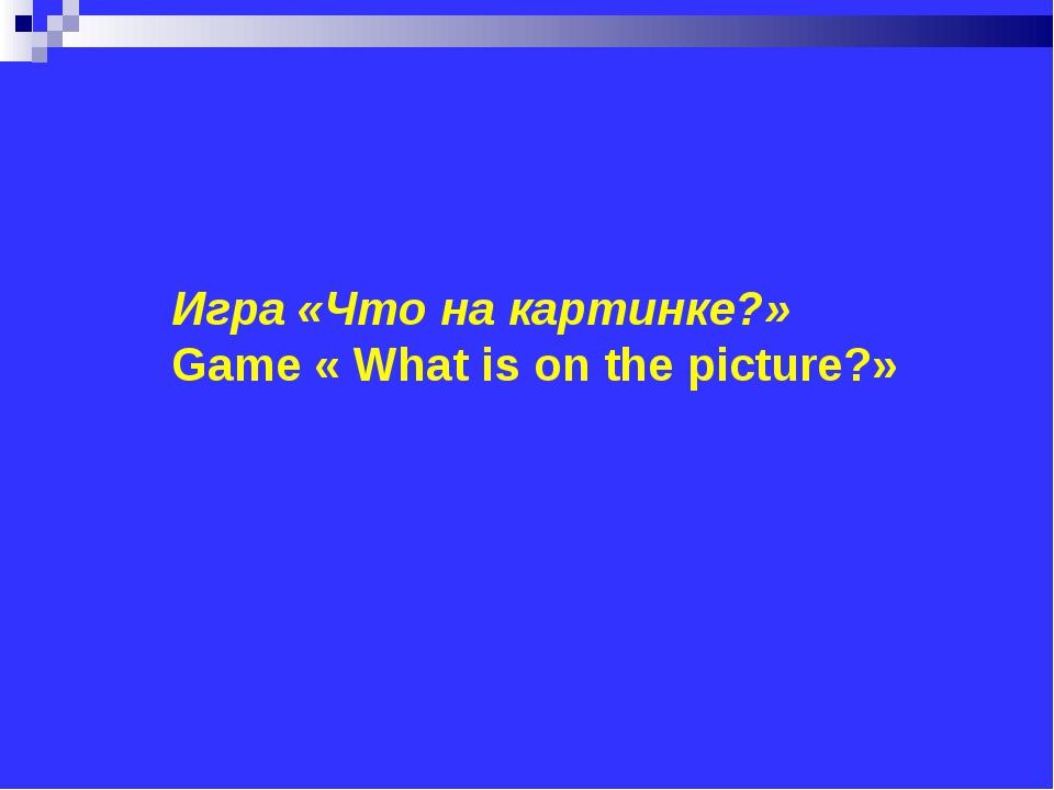 Игра «Что на картинке?» Game « What is on the picture?»