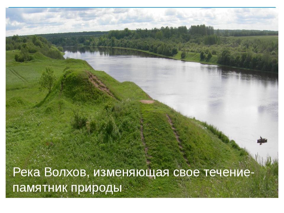 Река Волхов, изменяющая свое течение- памятник природы
